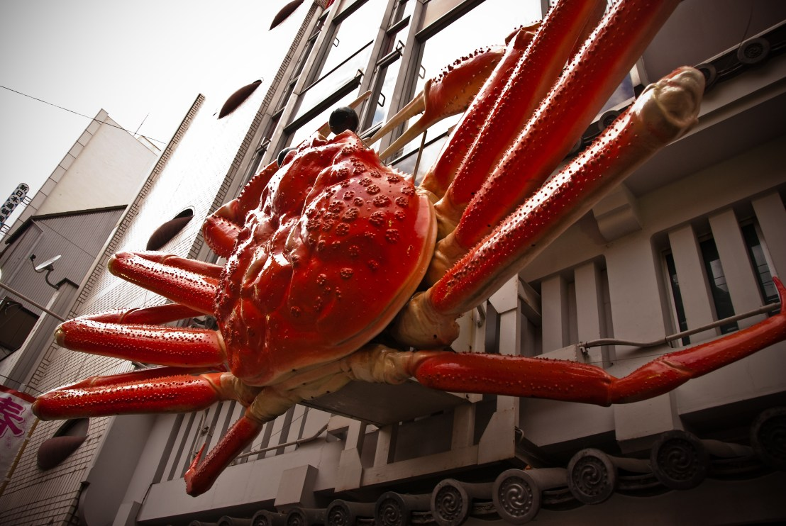 What to do in Osaka - take a selfie with the giant crab in Dotonbori