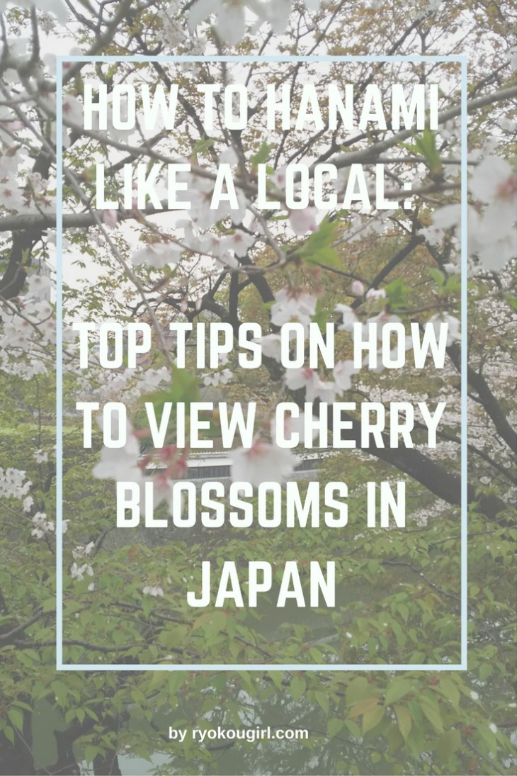 How to hanami like a local: top tips on how to view cherry blossoms in Japan