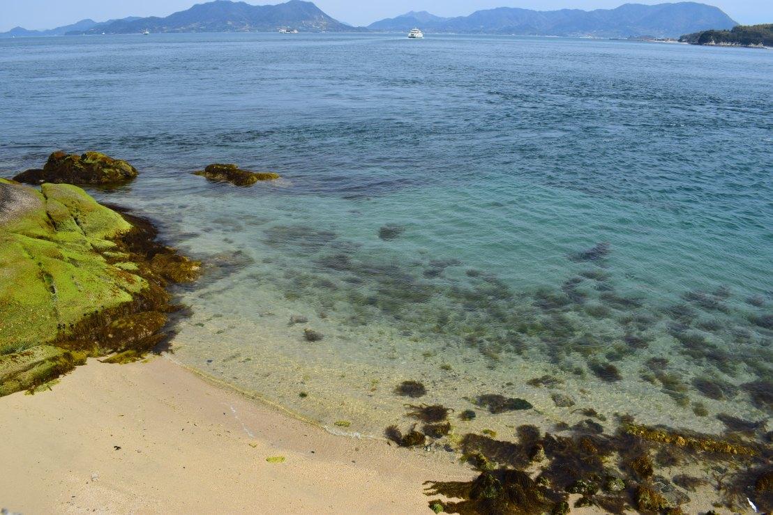 Beautiful beaches on Japan's rabbit island Okunoshima