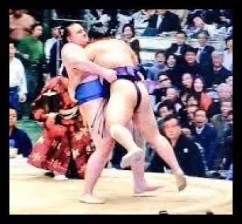 栃煌山,相撲,力士,愛称,シャケ