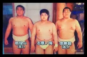 栃煌山,相撲,力士,高校時代