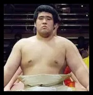 栃煌山,相撲,力士