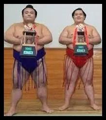 阿武咲,相撲,力士,親友,貴景勝