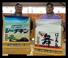 貴ノ富士,相撲,経歴