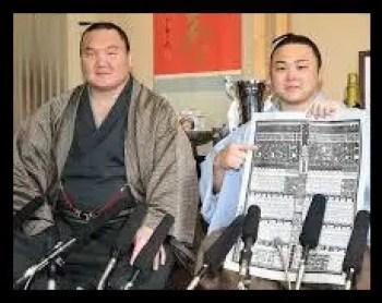 炎鵬,相撲,昔,現在,経歴