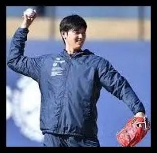 大谷翔平,野球,メジャーリーガー