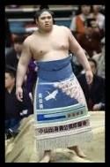 貴ノ富士,相撲