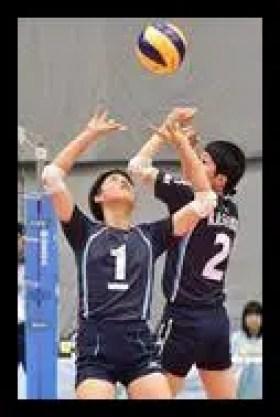 関菜々巳,バレーボール,全日本女子,セッター