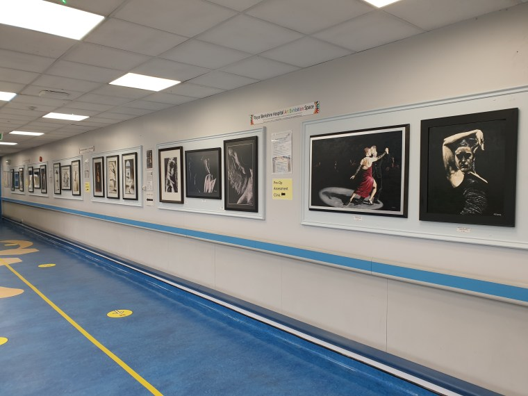 Fine art hung in the Royal Berkshire Hospital, for sale in aid of the NHS charity