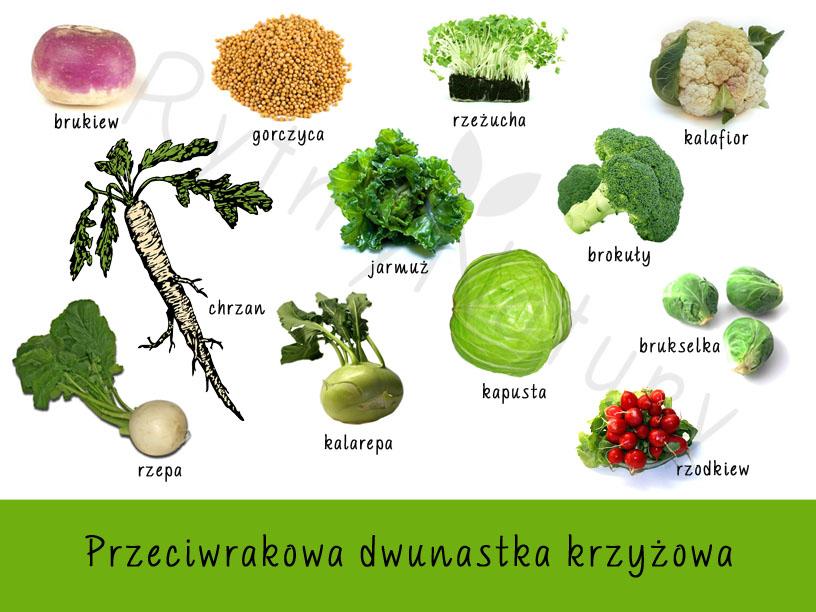 Najzdrowsze warzywa czyli przeciwrakowa dwunastka krzyżowa