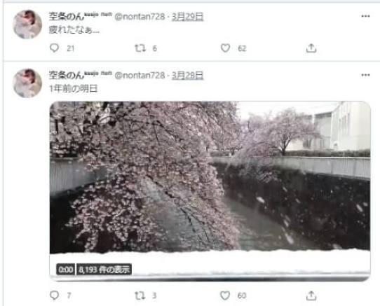 空条のんのTwitter。3月29日を最後に更新がストップ