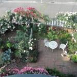 小さな庭の航空写真①