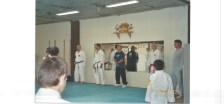 Silvan dojo rank advancement