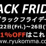 ブラックフライデー 龍虎MMA