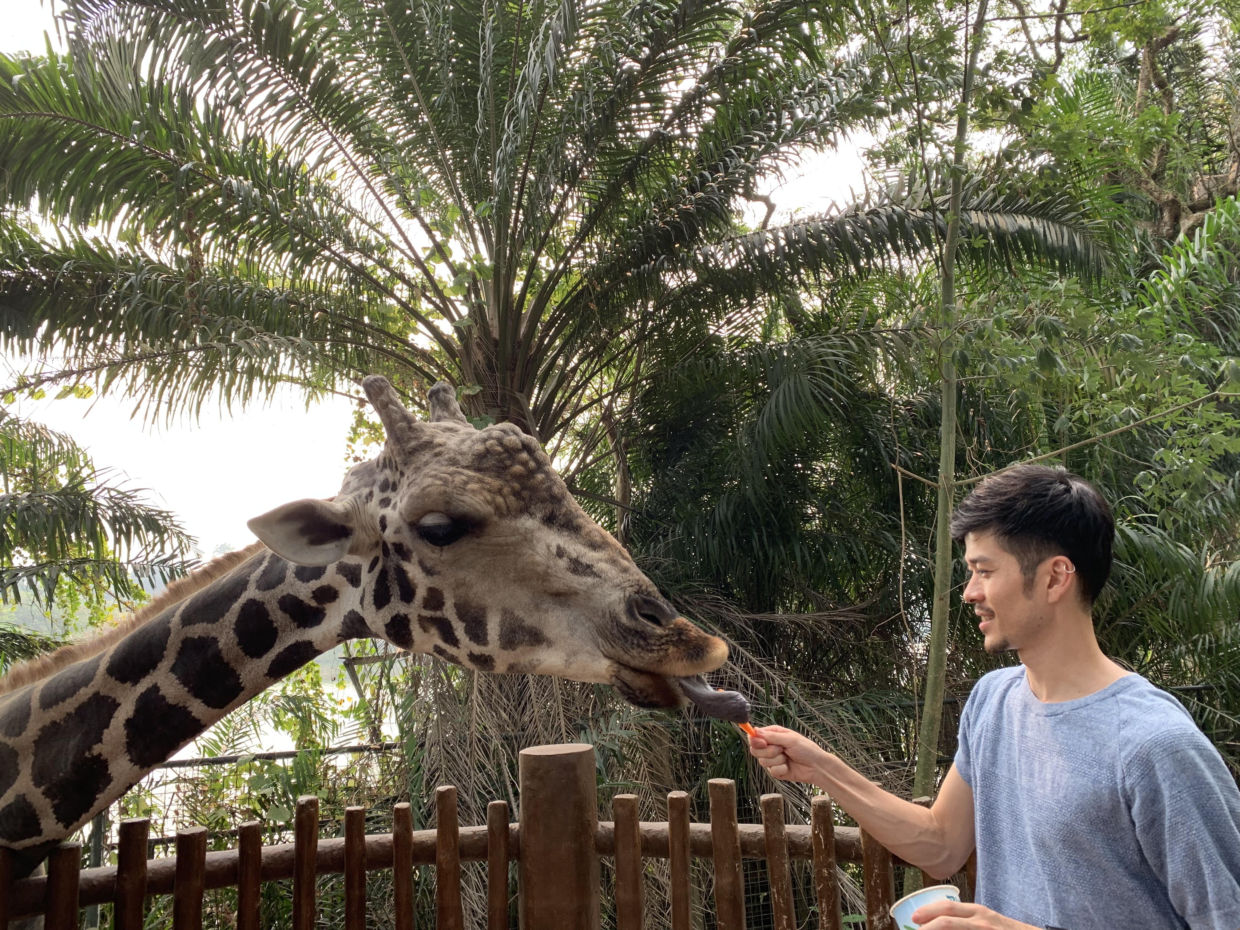 シンガポールズー シンガポール動物園