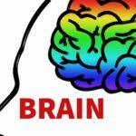 あなたのネガティブな思考を放棄して脳を再編成する最良の方法とは