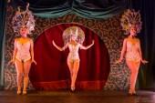 Ziegfeld's_Midnight_Frolic-6