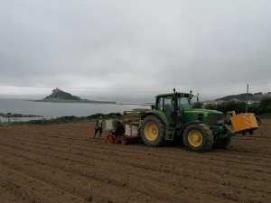 Agricultural Services Cornwall St Micheals Mount RZT Ltd Contractors (2)