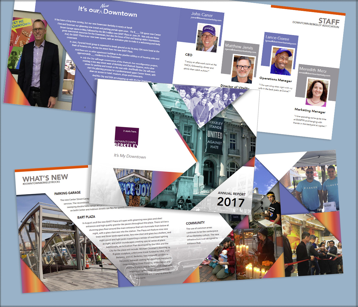 Annual Report Design and Layout