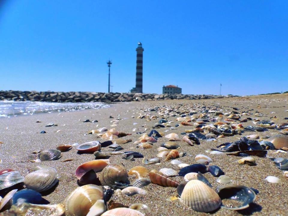 Sea Beach Apartment Italia Lido di Jesolo  Bookingcom