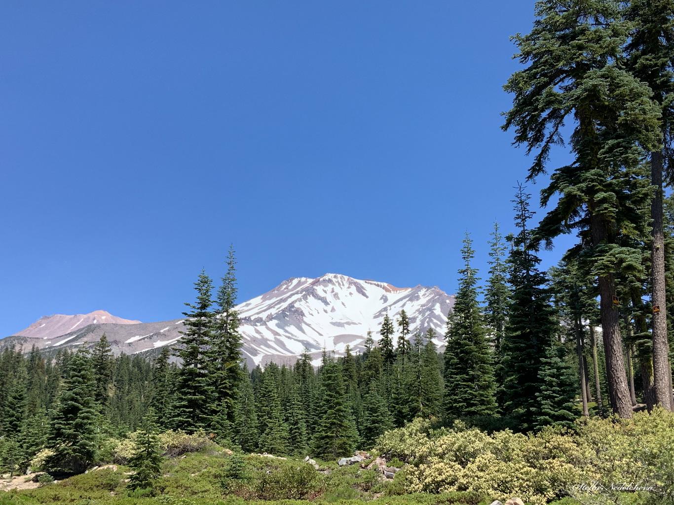 Vue sur le mont Shasta en été