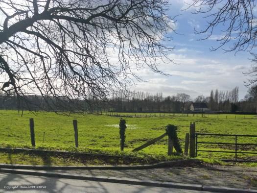Paysage de campagne en Normandie
