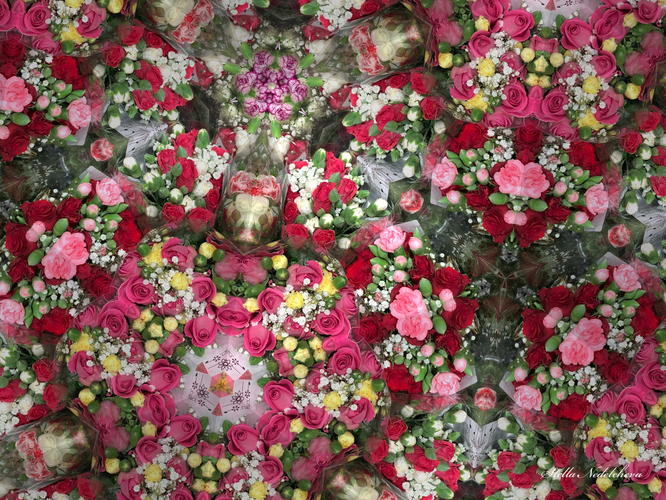 Opulence de fleurs