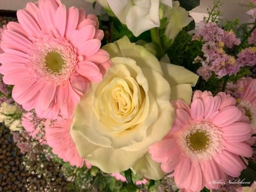 Gerberas roses et rose blanche