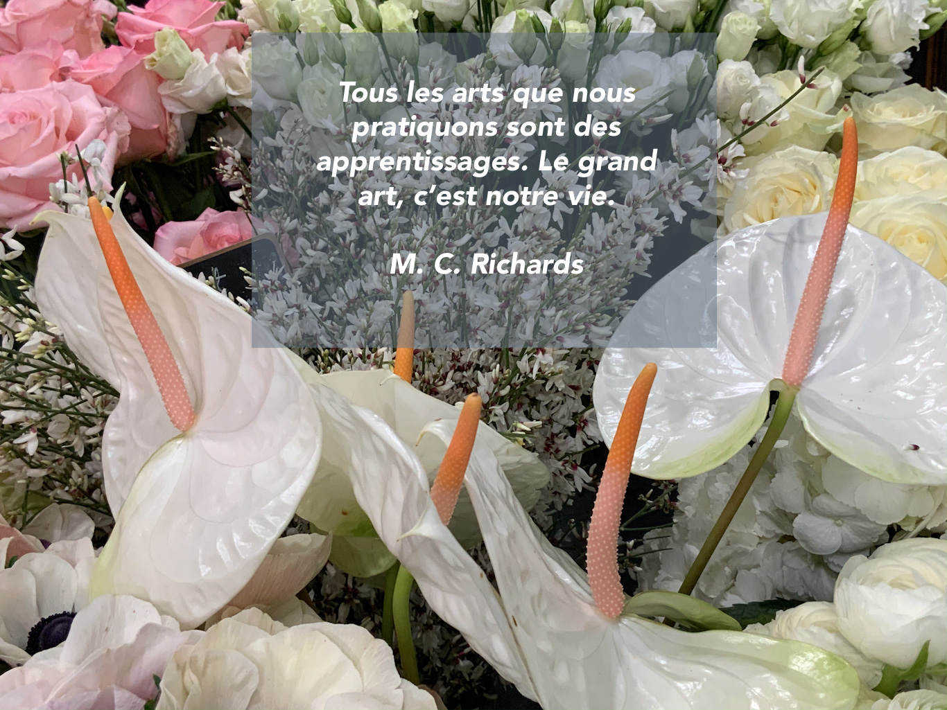 Citation sur l'art de la vie