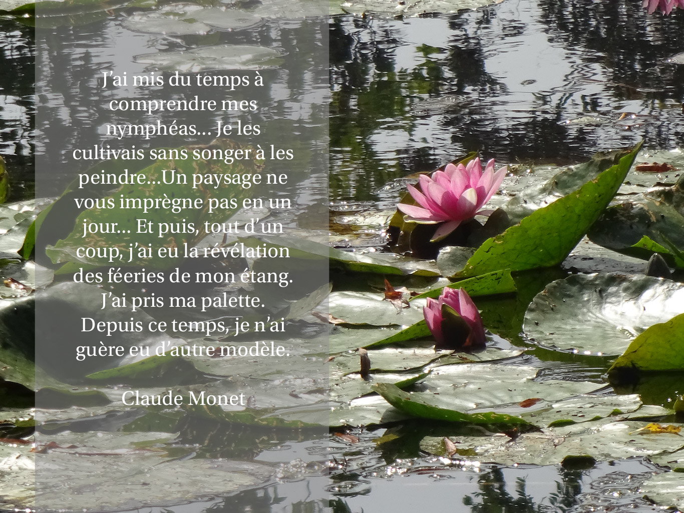 Citation de Claude Monet