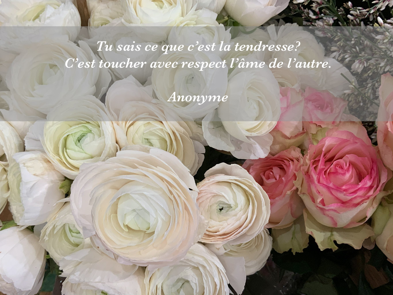 Citation - tendresse