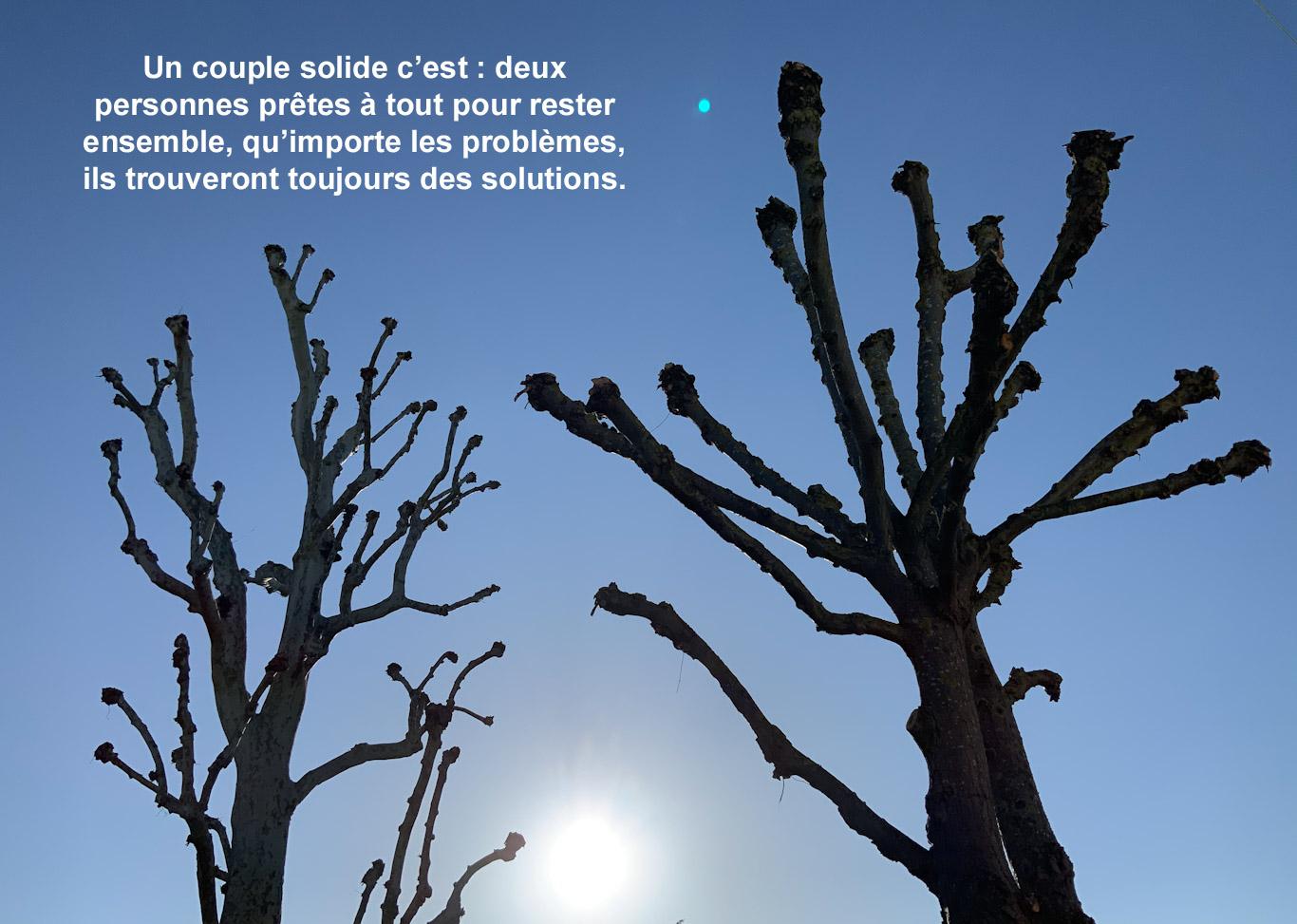 Citation : couple solide