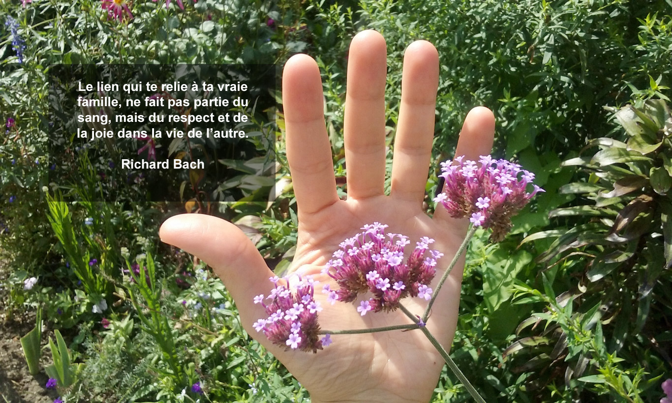 Main humaine dans la nature
