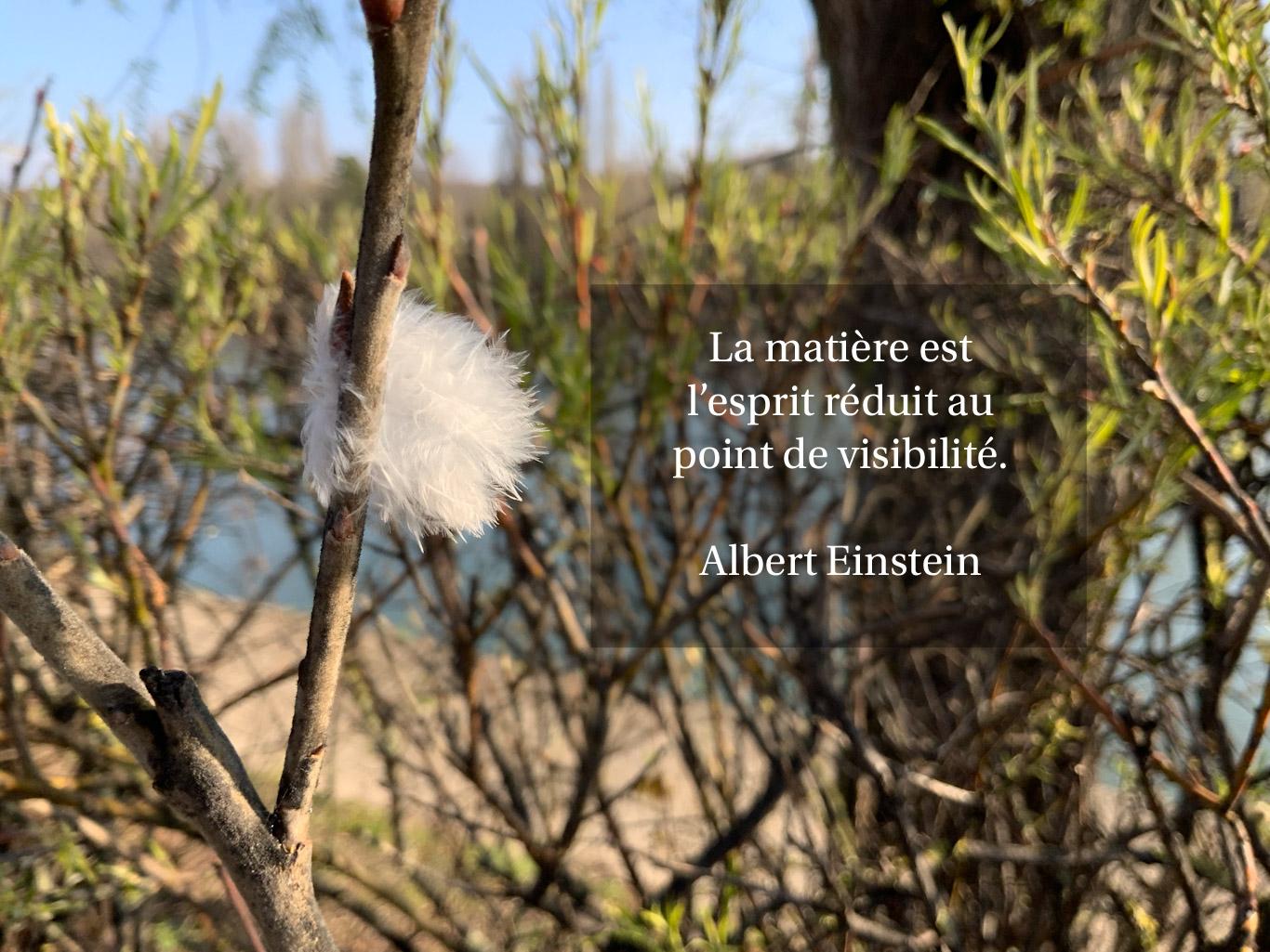 Citation de Albert Einstein sur la matière et l'esprit