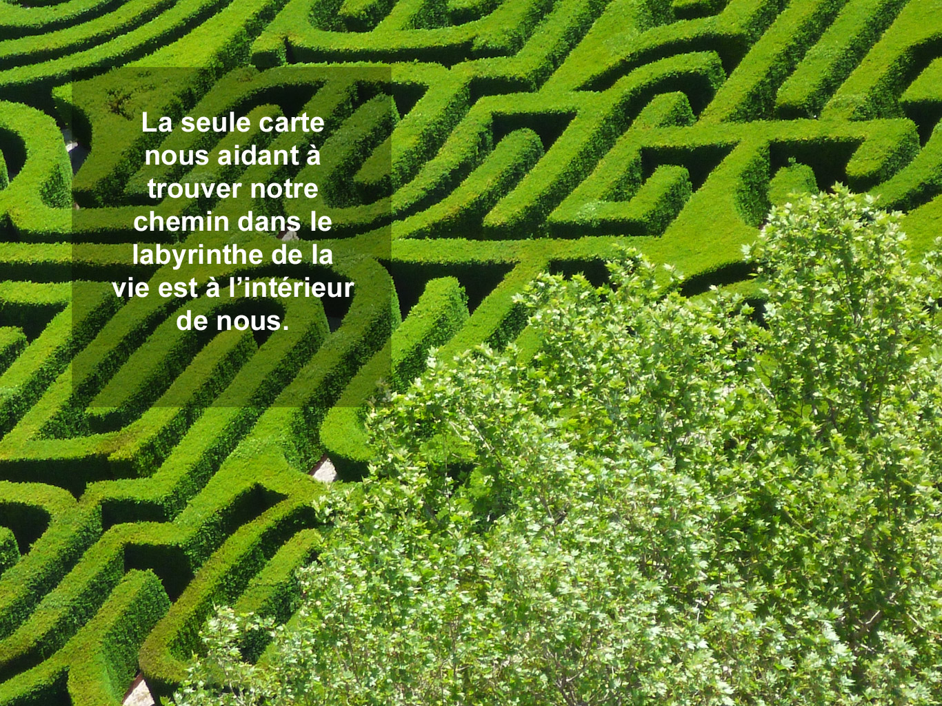 Citation - labyrinthe