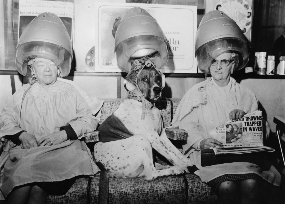 These Vintage Hair Dryer Photos Make It Seem Cool Under