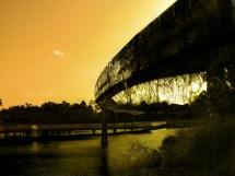 Abandoned Disney World Monorail