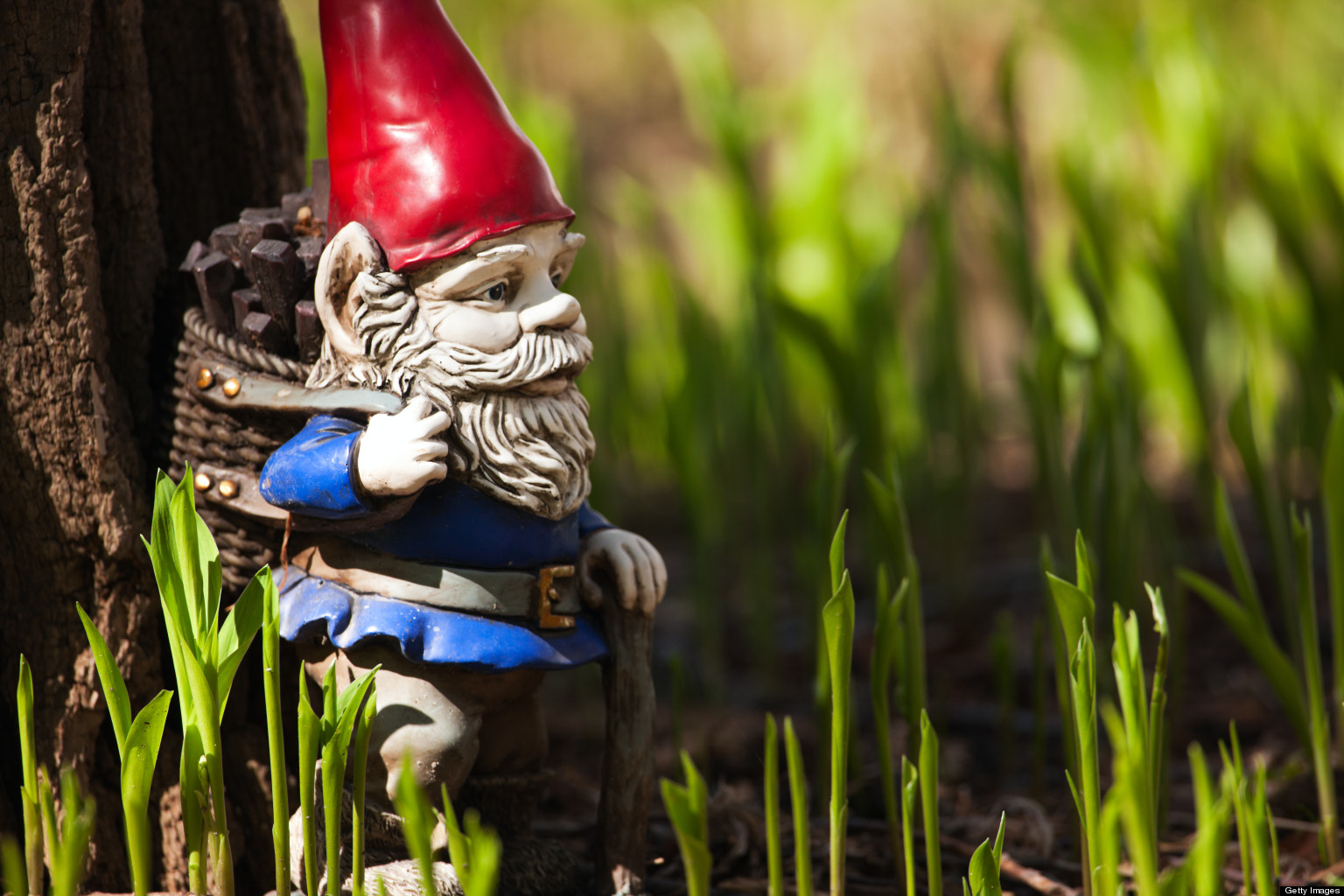 Garden Gnomes Finally Allowed At Chelsea Flower Show