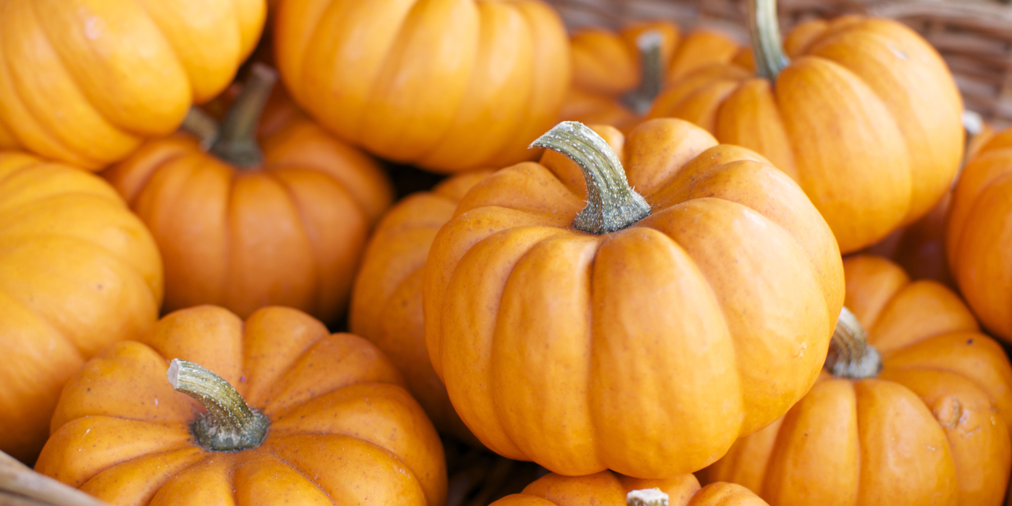 Fall Desktop Wallpaper With Pumpkins 5 Surprising Uses For Pumpkin None Of Which Are Lattes