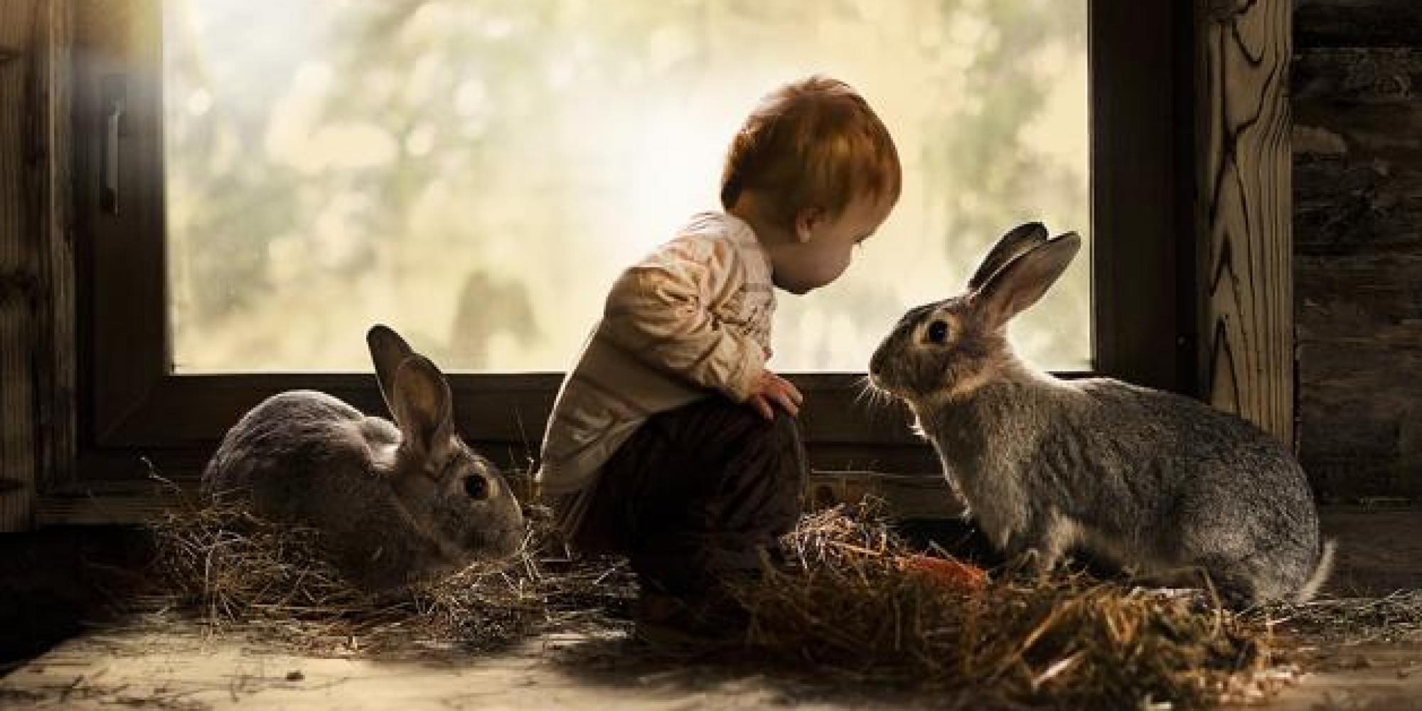 Girl Shoot Boy Wallpaper These 8 Magical Photos Of Child Animal Whisperers Will