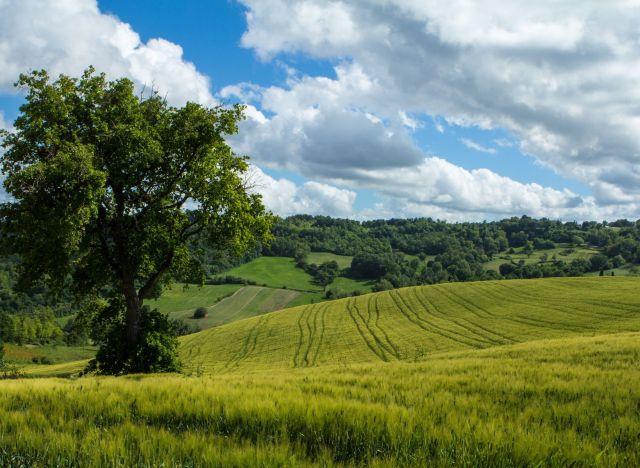 Il paesaggio pi bello dItalia scovato da un utente di Reddit Proceno al confine fra Lazio e