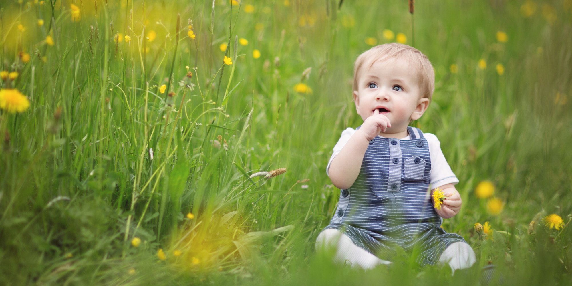 Cute Boy Babies Wallpapers For Facebook Profile 12 Sweet Baby Names For Nature Loving Parents Huffpost