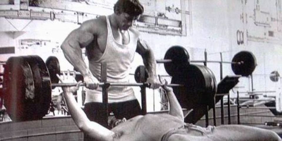 Image result for bench press arnold
