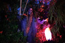 Halloween Haunted Houses La' Hayrides Mazes