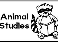 1000+ images about Homeschool- Animal Science on Pinterest