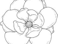 12 best images about Mississippi coloring pages on