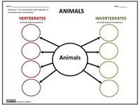 1000+ images about Vertebrates and Invertebrates for Kids