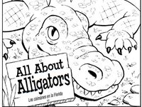 1000+ images about Alligators and Crocodiles on Pinterest