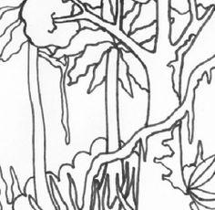 1000+ images about rainforest...kinder on Pinterest