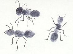 Preschool bug theme lesson plans about insects and theme